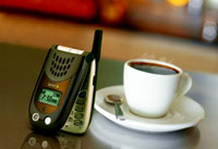 Sanyo SCP-3100 Mobile Phone In Espresso Color
